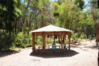 Creswick-Regional-Park-Slaty-Creek-Picnic-Area-Campground