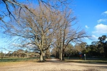 Glenlyon-Recreation-Reserve