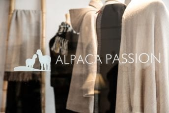 Alpaca-Passion-Shop-002.jpg